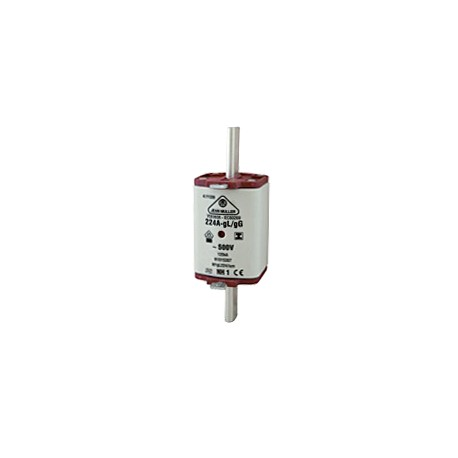 160A Fuses for Holders